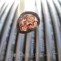 双屏蔽工程网线-千兆CAT6类双屏蔽4N级无氧铜线芯介绍 HYA53电话电缆线