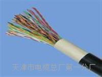 行政电话电缆HYA-50x2x0.5型号 SYV视频电缆线