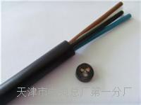 行政电话电缆HYA-50x2x0.5标准做法 SYV视频电缆线