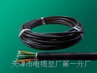 行政电话电缆HYA-50x2x0.5天联直销 SYV视频电缆线