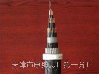 行政电话电缆HYA-50x2x0.5原厂销售 HYA通信电缆线