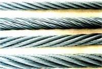 西安310不銹鋼絲繩