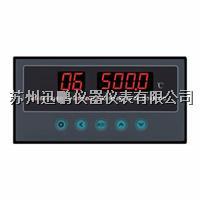 迅鵬WPL8-E八通道溫度巡檢儀 WPL8