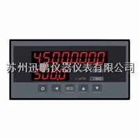 流量控制儀 蘇州迅鵬WPJ-C1V WPJ