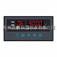 溫度巡檢儀 迅鵬WPL16-AV1 WPL16