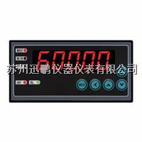迅鵬WPE6-DM單通道儀表 WPE6