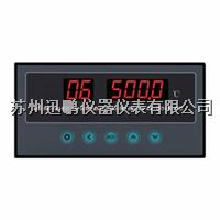 8路溫度巡檢儀  迅鵬WPL8 WPL8