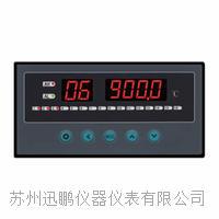16路溫度巡檢儀|迅鵬WPL16-A WPL16