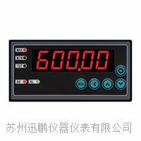 迅鵬WPE6-DM溫度顯示儀 WPE6