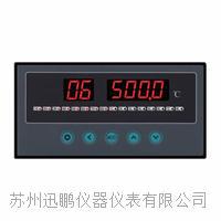 8通道溫度巡檢儀/迅鵬WPL8 WPL8