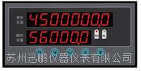 蘇州迅鵬WPKJ-P1流量表 WPKJ