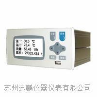 迅鵬WPR22FC-IK流量積算控制儀? WPR22FC