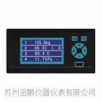蘇州迅鵬WPR10多通道無紙記錄儀 WPR10