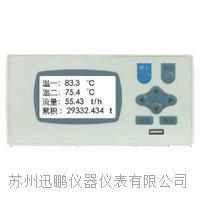 蘇州迅鵬WPR22FA-I明渠流量積算器 WPR22FA