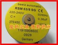 德國貝爾茨BAELZ RSM63/8SG電動閥小馬達