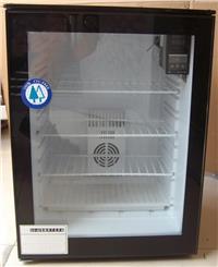 種子發芽箱 催芽箱 種子培養箱 恒溫箱 可制冷恒溫箱 ZF-60H