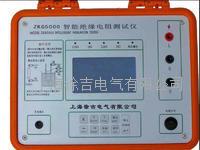 ZKG5000智能絕緣電阻測試儀 ZKG5000