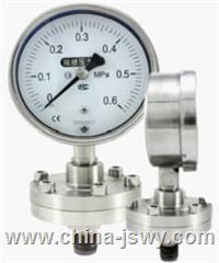 Y-M系列隔膜壓力表Y-100B-F/Z/MG Y-100B-F/Z/MG