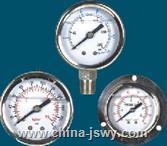 耐震壓力表YTN-60ZT YTN-60ZT
