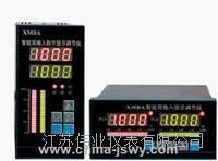 單點數顯儀GW-WSY-10T GW-WSY-10T