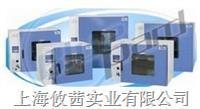 DHG-9203A鼓风干燥箱
