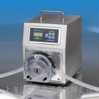 WT600-3J精密蠕動泵保定蘭格