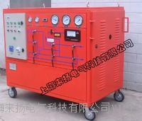 SF6氣體抽真空及回充裝置 LYGS3000