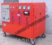 SF6氣體沖壓裝置 LYGS4000