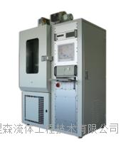 Argentox 臭氧测试柜 P3