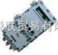 PT650F-Ex隔爆型稱重顯示控制器 PT650F-Ex