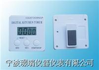 JR1001计时器 JR1001