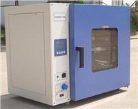 干燥箱 XTS8000电热恒温鼓风干燥箱(台式)