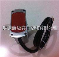 KGE1-1P礦用澆封型磁感開關 井筒磁性開關 KGE1-1P