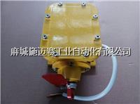 (感知式)纵向撕裂保护装置、纵向撕裂开关JYB/GDZL-Z-C 参数/价格 JYB/GDZL-Z-C