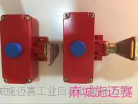 DLX-K2/J拉线开关