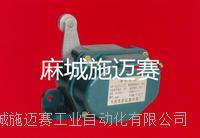 耐高温限位开关1LS-J503H