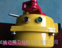 防腐缆绳控制器(带指示灯)SDR-FKWT/16 DML-K43650ZH