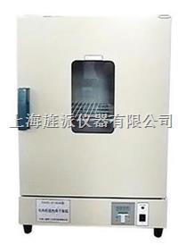 101型電熱鼓風干燥箱 101-0AB