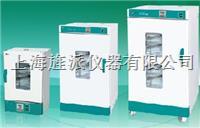 電熱恒溫鼓風干燥箱 DHG9240B