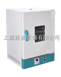 202-2S立式電熱恒溫干燥箱 202-2S