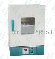 干烤**箱熱空氣消毒箱廠家 GRX-9123A