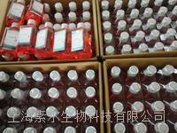 GIBCO DMEM(高糖) 不含丙酮酸鈉12100046現貨 12100046