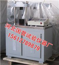 水泥恒荷压力试验机 DYE-300S型