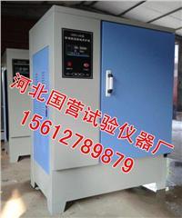 混凝土標準養護箱 SHBY-40B型