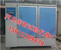 混凝土標準養護箱 YH-60B型