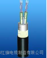 TTYC船用電纜 TTYC船用電纜