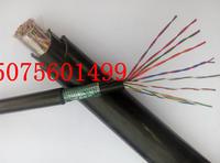 吉林市通訊線  485線  KVV-P2-2*0.75mm2名稱 KVV-P2