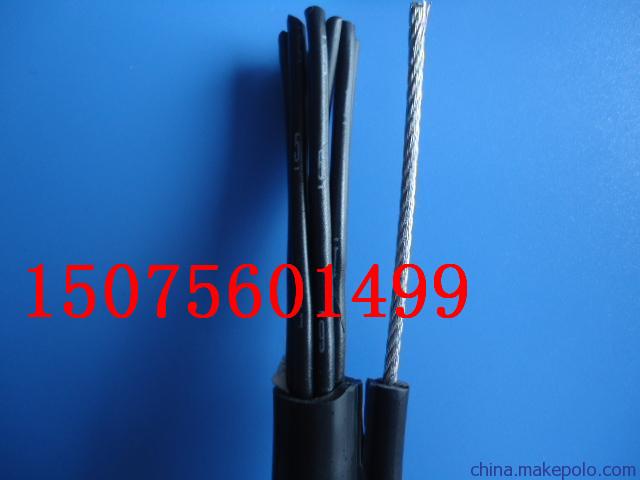 仙居縣POWER CABLE YJV32-06/1kV, 5Cx4mm2營業執照
