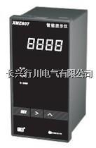 液晶溫度記錄儀 XMTHR148