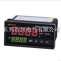16路帶電腦通訊溫度巡檢儀 XMTJ1601K/1602k